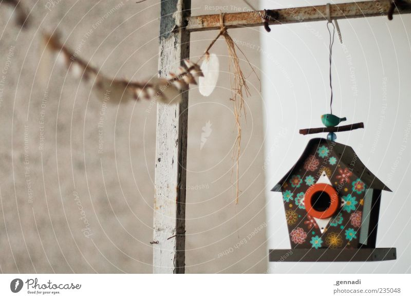 House (Residential Structure) Wall (building) Contentment Concrete Hang Paper chain Birdhouse Floral Collector's item