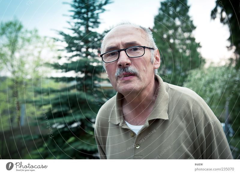 Human being Man Green Tree Adults Senior citizen Masculine Eyeglasses Facial hair Retirement Skeptical Neighbor Moustache Person wearing glasses Mistrust
