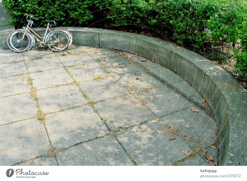 Bicycle Concrete Break Round Bench Hedge Parking area