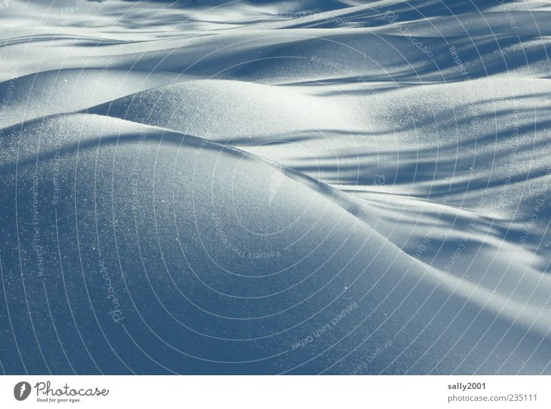 Gentle ice-cold hills Nature Landscape Earth Winter Ice Frost Snow Field Hill Waves Esthetic Cold Beautiful White Serene Calm Elegant Idyll Climate Protection