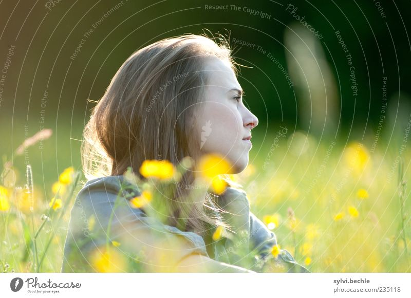 Human being Nature Youth (Young adults) Plant Summer Flower Loneliness Calm Face Yellow Relaxation Environment Life Meadow Feminine Grass