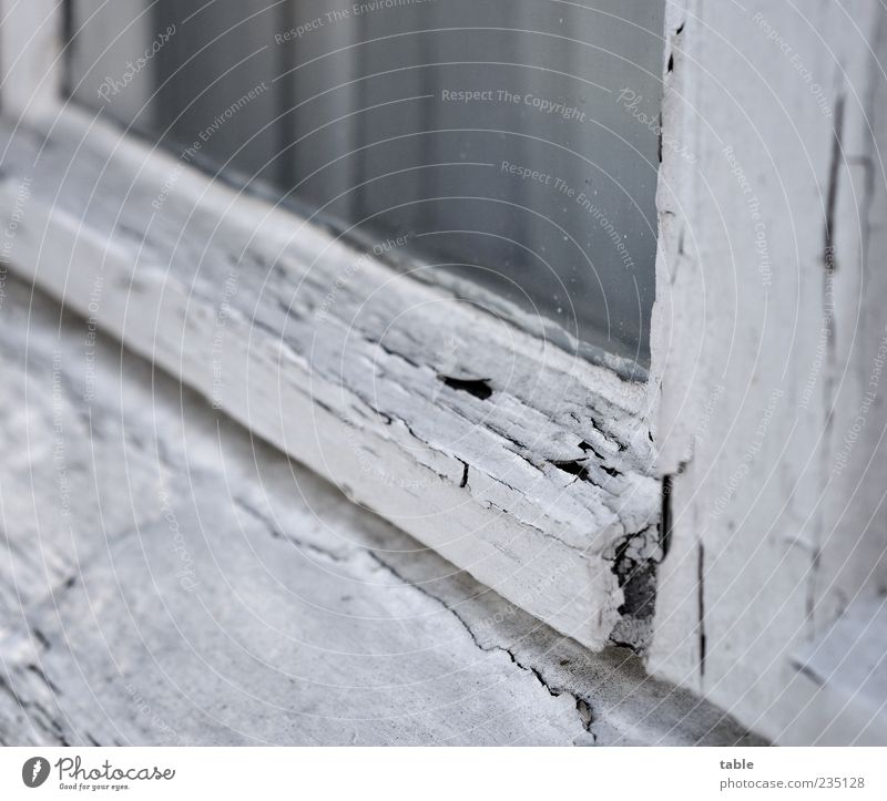 Old White Window Wood Gray Dye Glass Broken Change Transience Past Decline Curtain Weathered Flake off Pane