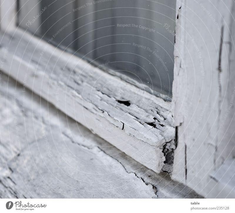 Old White Window Wood Gray Dye Glass Broken Change Transience Past Decline Curtain Weathered Flake off Pane