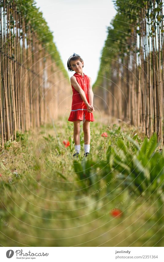 Little girl walking in nature field wearing beautiful red dress Woman Child Human being Nature Summer Beautiful Flower Joy Girl Adults Lifestyle Meadow Feminine