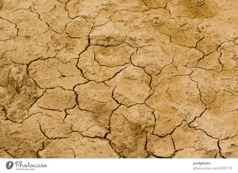 dry earth Environment Nature Elements Earth Summer Climate Climate change Weather Drought Field Desert Sand Hot Dry Warmth Brown Colour photo Exterior shot