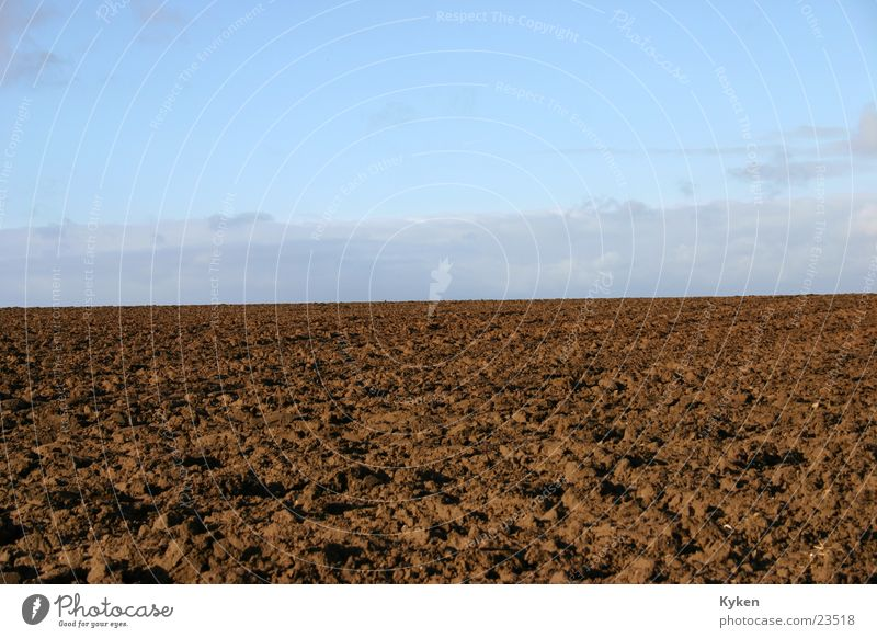 Mother Earth Field Meadow Brown Horizon Agriculture Sky Blue Contrast Nature