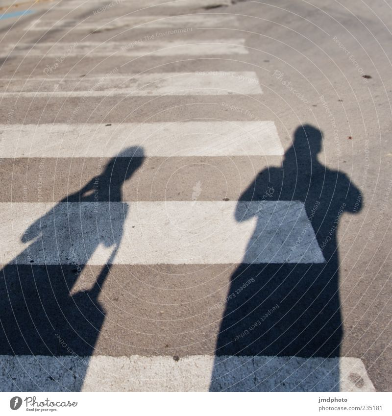 Shadows on the zebra crossing Human being Masculine 2 Traffic infrastructure Passenger traffic Road traffic Pedestrian Zebra crossing Pedestrian crossing