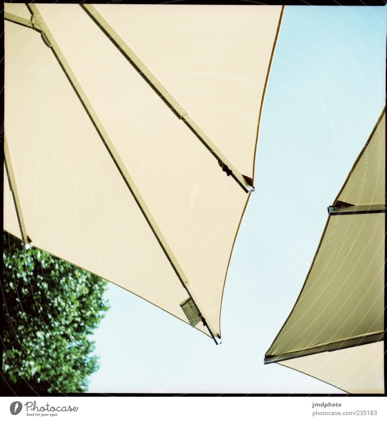 sunshades Style Summer Sky Sunshade Design Colour photo Exterior shot Detail Deserted Sunlight Worm's-eye view