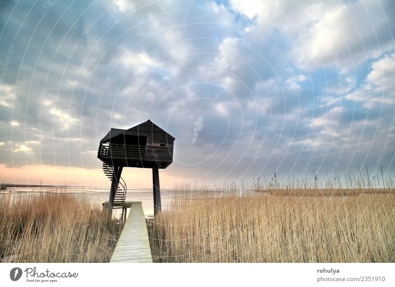 wooden observation tower over sky, Netherlands Vacation & Travel Nature Landscape Sky Clouds Horizon Spring Weather Beautiful weather Coast Building