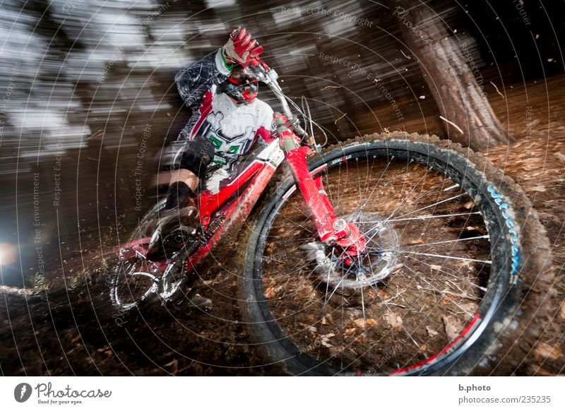 downhill speed Sports Sportsperson Cycling Mountain bike Mountain biking Human being Masculine Young man Youth (Young adults) Man Adults 1 18 - 30 years Tree