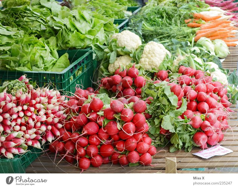 radish Food Vegetable Lettuce Salad Nutrition Organic produce Vegetarian diet Fresh Healthy Delicious Juicy Green Red Farmer's market Vegetable market