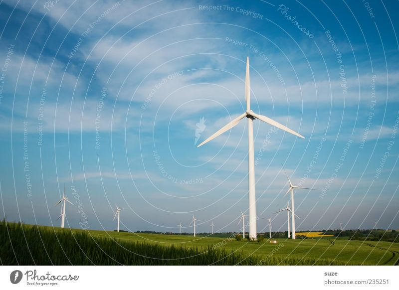 Sky Nature Blue Far-off places Environment Landscape Meadow Air Horizon Wind Field Climate Energy industry Beautiful weather Wind energy plant Climate change