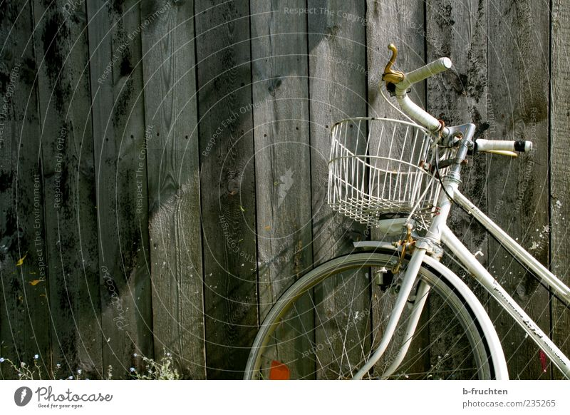 turned off Hut Bicycle Wood Authentic Gray Decline Past Transience Change Wooden board Wooden wall Nostalgia Colour photo Exterior shot Copy Space left Evening