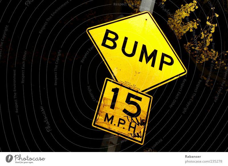 BUMP!! Road sign Dirty Thin Glittering Bright Clean Yellow Manhattan Caution Kilometers per hour Speed Sign 15 Lamp Rod Tree Leaf Black Dark Night Frame