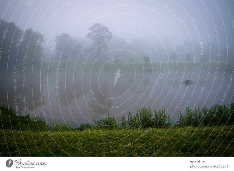 Pond with Fog Environment Nature Landscape Water Weather Grass Park Moody Relaxation Cold Calm Beautiful Subdued colour Exterior shot Deserted Copy Space top