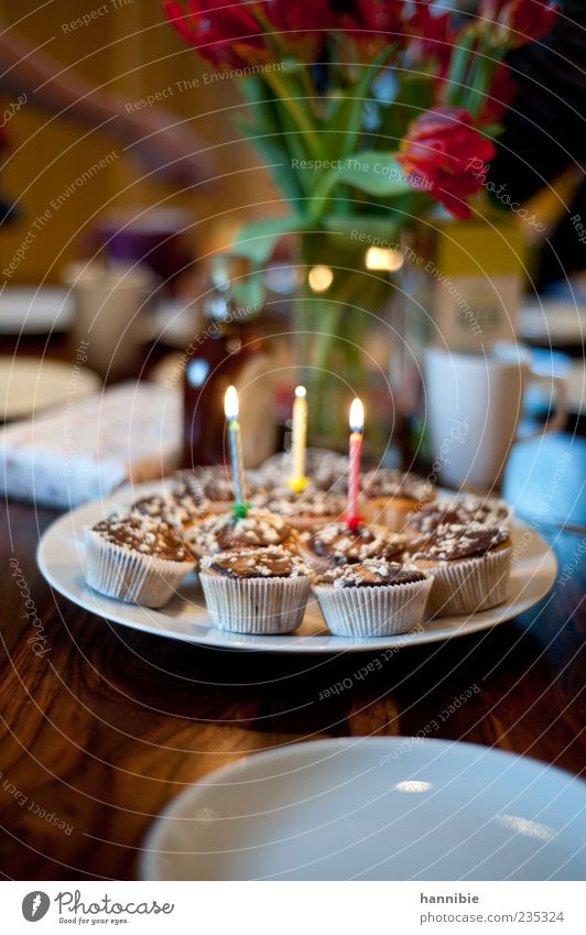 light and tasty Cake Dessert Nutrition To have a coffee Feasts & Celebrations Birthday Sweet Green Red White Joy Happiness Muffin Candle Colour photo