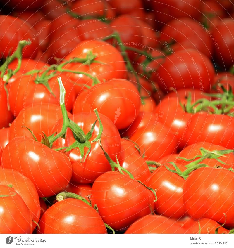 tomatoäh Food Vegetable Nutrition Organic produce Vegetarian diet Fragrance Fresh Delicious Round Juicy Red Tomato Bush tomato Many Colour photo Multicoloured