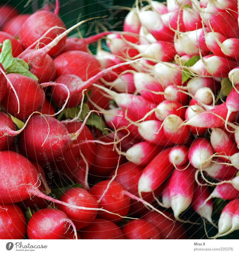 radish Food Vegetable Nutrition Organic produce Vegetarian diet Fresh Small Delicious Red Radish Colour photo Multicoloured Close-up Pattern
