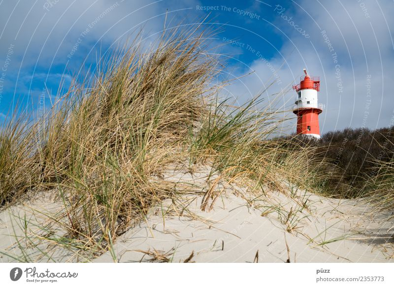 lighthouse Vacation & Travel Tourism Far-off places Freedom Summer Summer vacation Sun Beach Ocean Island Nature Landscape Sand Sky Clouds Beautiful weather