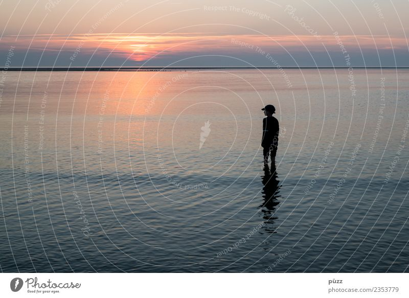 Sunset Vacation & Travel Adventure Far-off places Freedom Summer Summer vacation Beach Ocean Island Human being Boy (child) Infancy 1 3 - 8 years Child