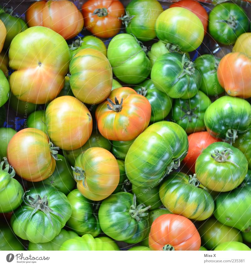 Green Nutrition Food Fresh Round Vegetable Delicious Many Tomato Organic produce Juicy Sour Raw Vegetarian diet Immature