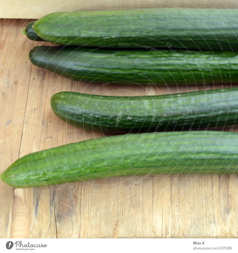 cucumber Food Vegetable Nutrition Organic produce Vegetarian diet Diet Fresh Long Delicious Juicy Green Cucumber Colour photo Multicoloured Close-up Deserted