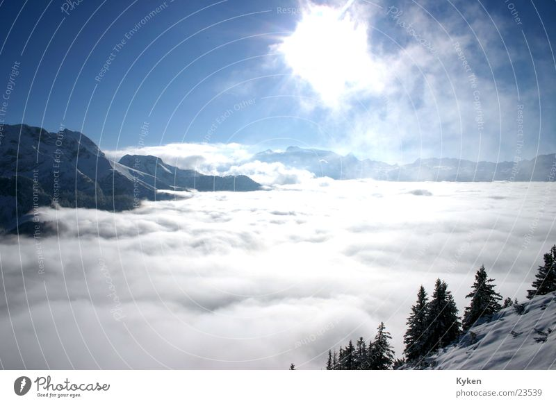 White Tree Sun Blue Winter Clouds Cold Snow Mountain Fog Climbing Fir tree Peak Slope