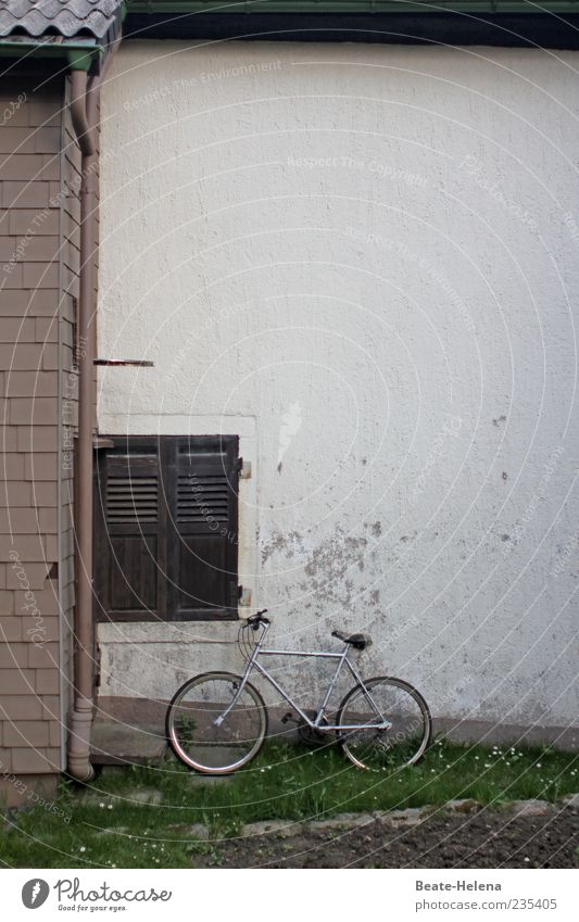 Old White Loneliness House (Residential Structure) Life Garden Brown Bicycle Facade Broken Gloomy Search Longing Past Plaster Silver