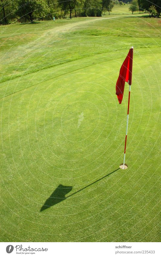 Green Far-off places Success Target Flag Grass surface Golf Hollow Competition Golf course Ball sports Single-minded Hole Putt Confine