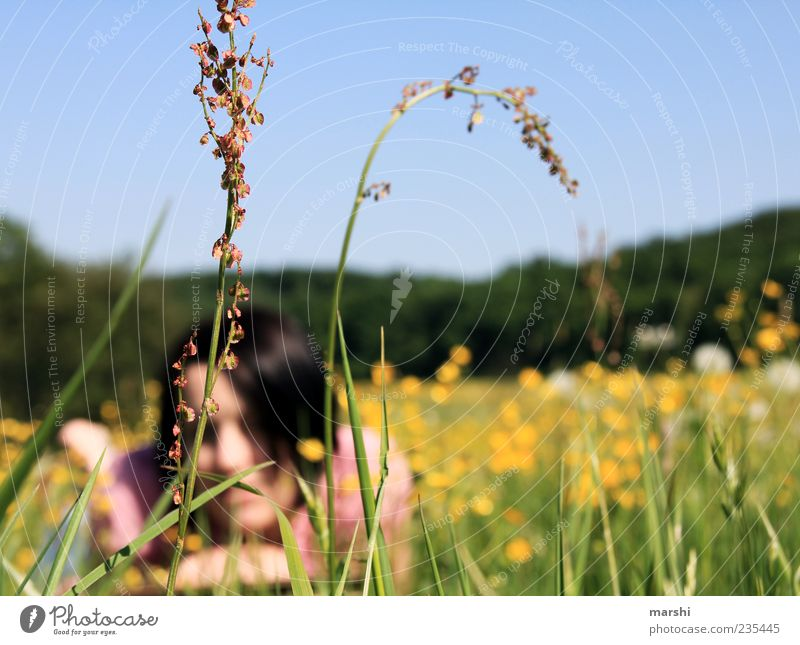 Chill out in the meadow Human being Young woman Youth (Young adults) Woman Adults 1 Nature Landscape Plant Spring Summer Beautiful weather Grass Blossom