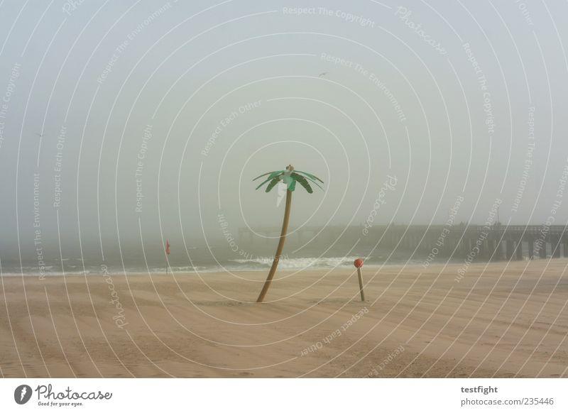 Sky Nature Water Ocean Beach Calm Relaxation Freedom Sand Coast Metal Wind Fog Plastic To enjoy Footbridge