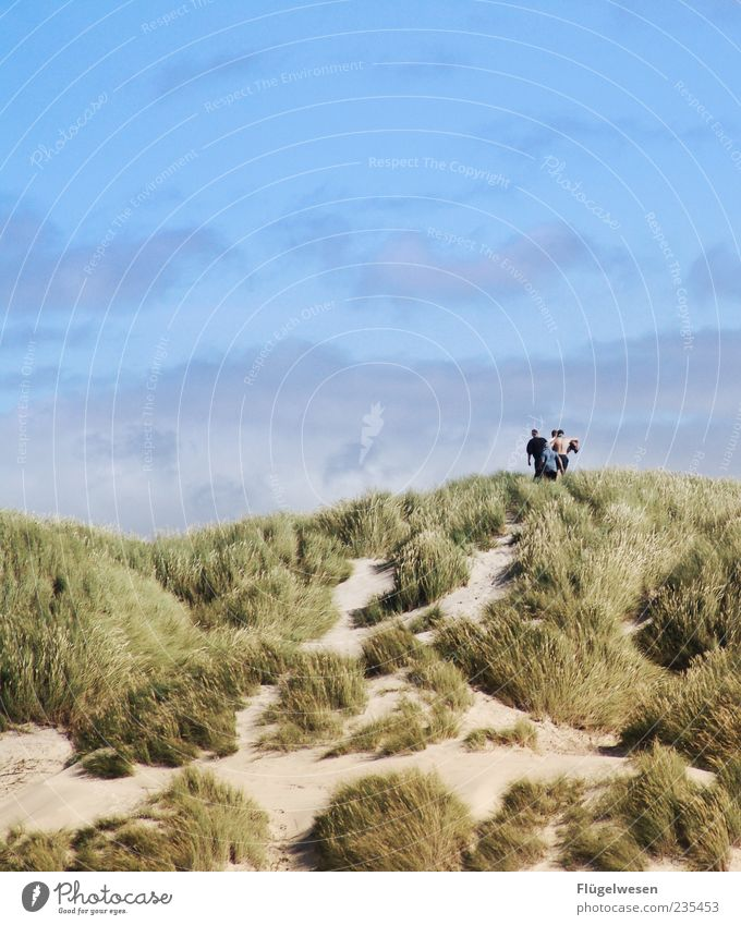 Towards the summer Vacation & Travel Tourism Trip Summer Summer vacation Human being Nature Landscape Sky Beautiful weather Coast Movement Beach dune
