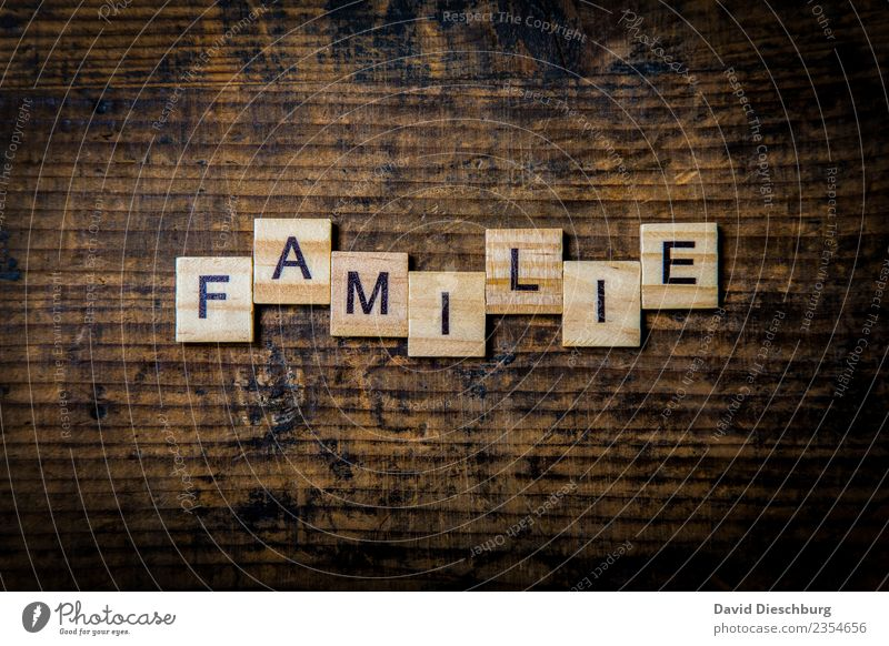 Family Advancement Future Sign Characters Relationship Expectation Considerate Communicate Study Love Team Teamwork Divide Trust Attachment Family & Relations