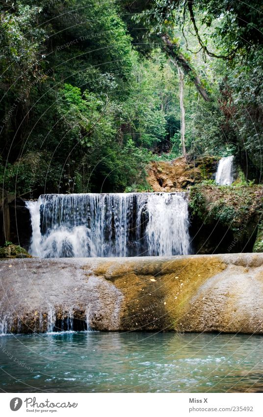 Nature Water Forest Environment Landscape Rock Wet Virgin forest Exotic Waterfall Jamaica