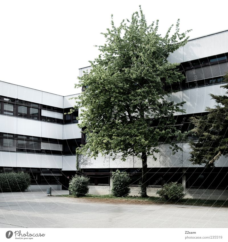Tree House (Residential Structure) Calm Environment Dark Window Cold Architecture Germany Contentment Dirty Arrangement Concrete Places Esthetic School building