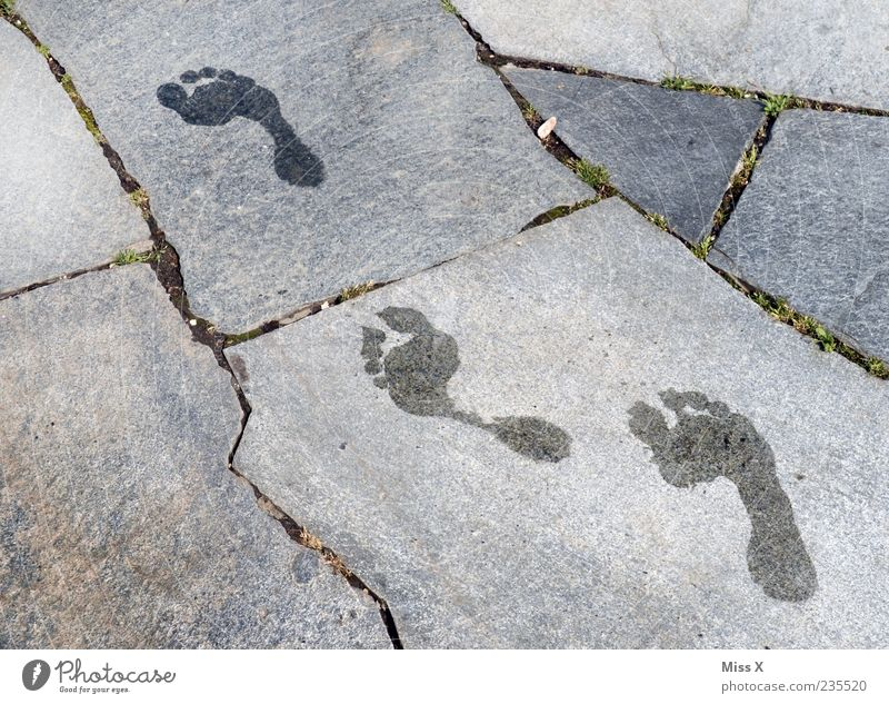 barefoot Summer Water Walking Wet Barefoot Footprint Colour photo Subdued colour Exterior shot Pattern Structures and shapes Deserted Bird's-eye view
