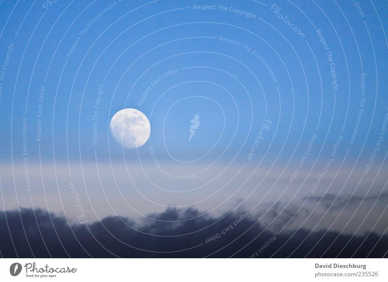 The moon rises... Nature Sky Clouds Storm clouds Moon Full  moon Climate Beautiful weather Blue White Round Moonlight Moonrise Clouds in the sky Cloud cover