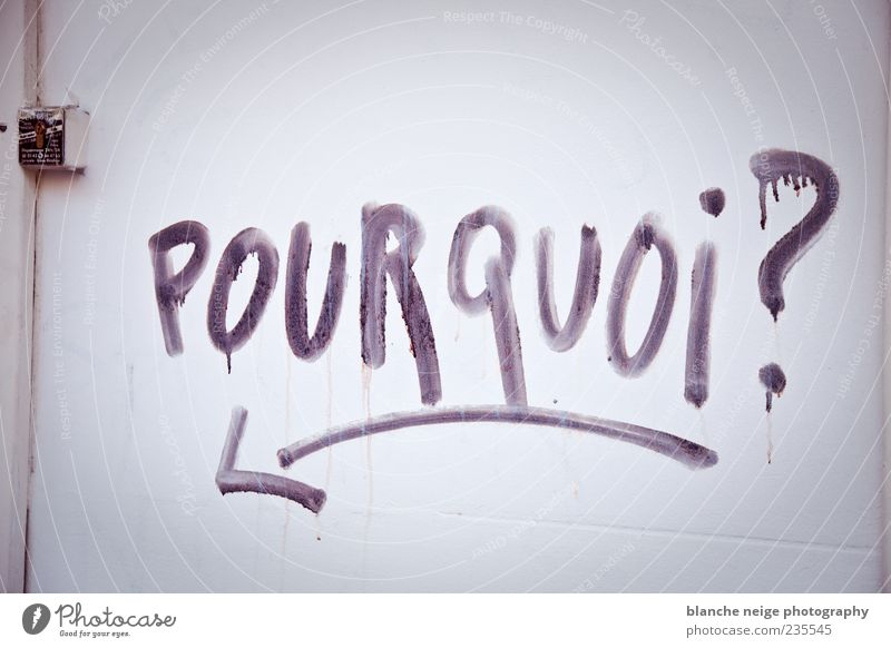 pourquoi? Art Wall (barrier) Wall (building) Facade Door Characters Write Sadness Concern Lovesickness Pain Longing Disappointment Loneliness Fear of the future