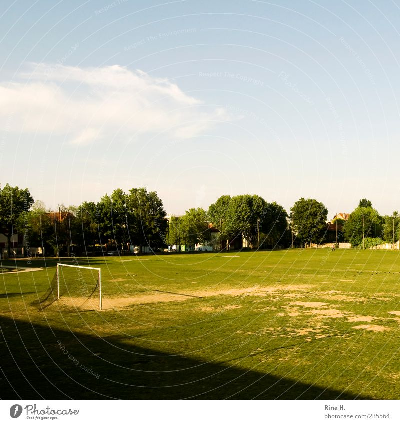 half Sporting Complex Football pitch Sporting grounds Sky Beautiful weather Tree Meadow Green Break Sports Goal Soccer Colour photo Exterior shot Copy Space top