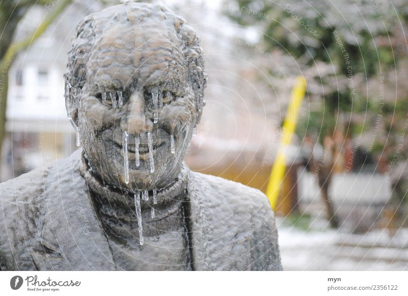 Human being Man Winter Face Adults Healthy Cold Metal Ice Smiling Nose Climate Drop Monument Illness Frozen