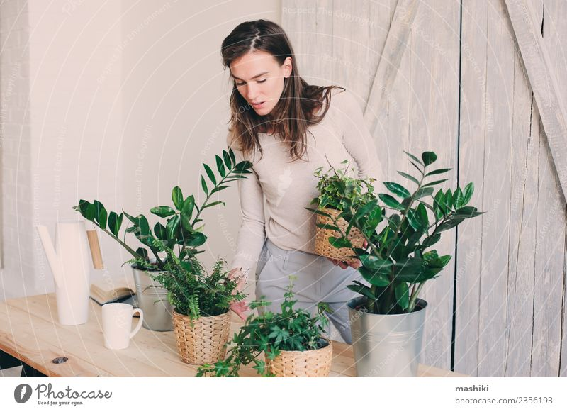young woman watering flowerpots at home Woman Plant Green Flower Leaf Adults Lifestyle Natural Leisure and hobbies Modern Ground Model Home Cozy Flowerpot Trend