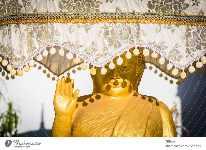 Buddha in the shade Vacation & Travel Far-off places Sightseeing Summer Sculpture Sign Esthetic Change Contentment Statue of Buddha Laos Gold Colour photo