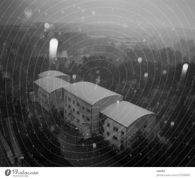 gravitation Landscape Winter Beautiful weather Ice Frost Snowfall Tree House (Residential Structure) Cold To fall Gray Prefab construction Black & white photo