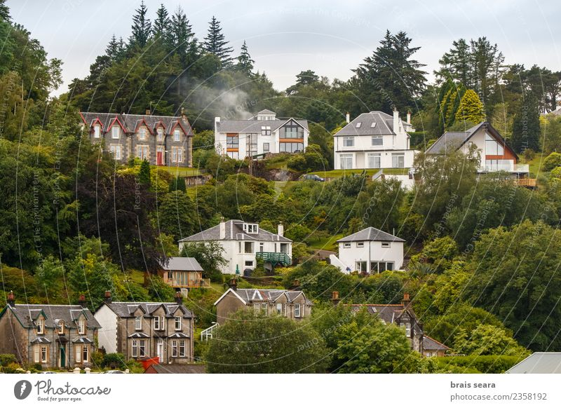 Oban houses Vacation & Travel Plant Blue Landscape Tree Ocean House (Residential Structure) Beach Forest Architecture Coast Building Tourism Stone Field