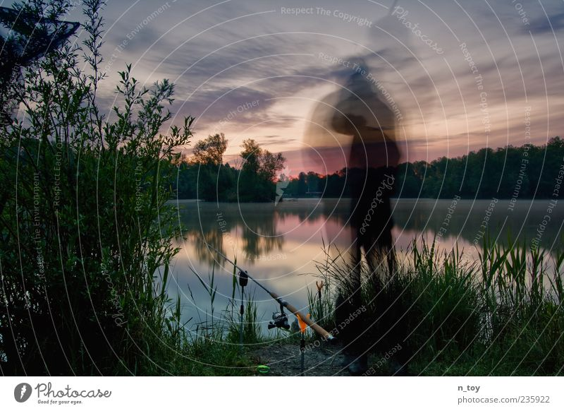 Human being Nature Water Plant Clouds Freedom Lake Moody Contentment Fog Wait Masculine Free Trip Adventure Break