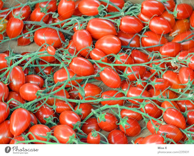 trussed tomatoes Food Vegetable Organic produce Fresh Small Delicious Round Red Vine tomato Bush tomato Tomato Vegetable market Greengrocer