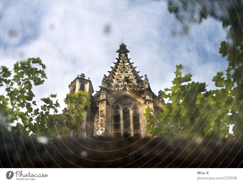 Nature Tree Plant Architecture Religion and faith Building Large Church Tower Manmade structures Landmark Dome Tourist Attraction Puddle Cathedral Gigantic