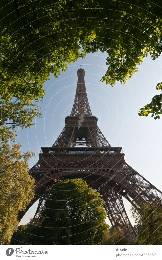 landmarks Sky Cloudless sky Beautiful weather Plant Tree Leaf Foliage plant Park Paris France Europe Capital city Tower Manmade structures Architecture