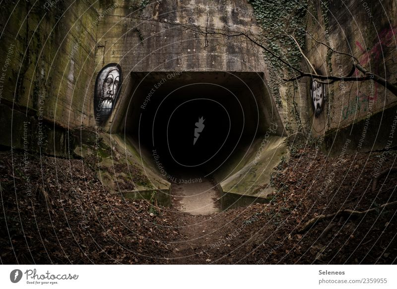 Who dares? Autumn Winter Bridge Tunnel Manmade structures Architecture Dark Creepy Apocalyptic sentiment Graffiti Colour photo Exterior shot Deserted