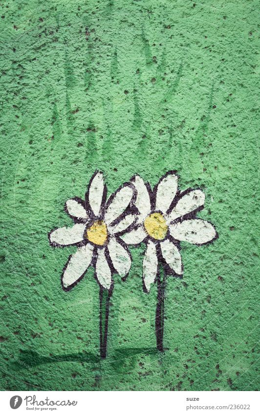 Beautiful Green Flower Graffiti Wall (building) Meadow Love Small Friendship Facade In pairs Simple Friendliness Daisy Plaster Comic